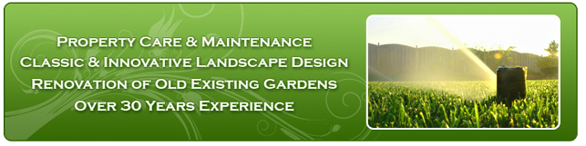 we renovate old existing gardens for over 30 years